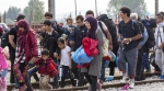 DL migranti, ANM chiede un giudizio di merito pieno ed effettivo -